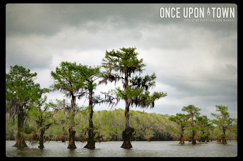 Caddo Lake 1