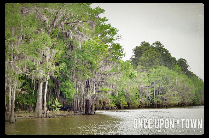 Caddo Lake 2