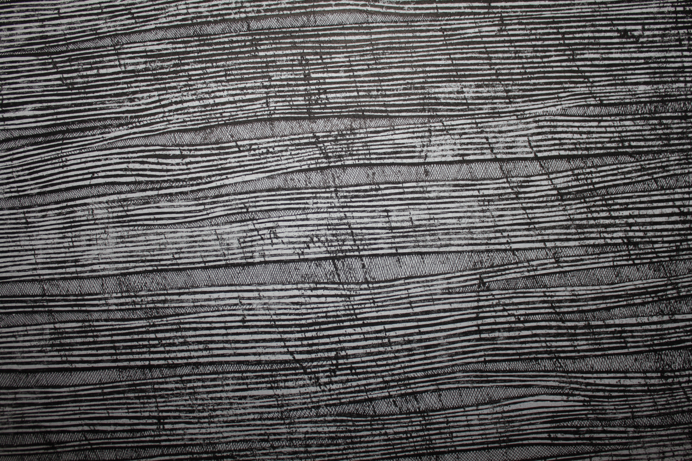 Locust 2 (detail).  2013. woodcut and concrete block relief with pen and ink on Japanese paper. 39 in x 26 in