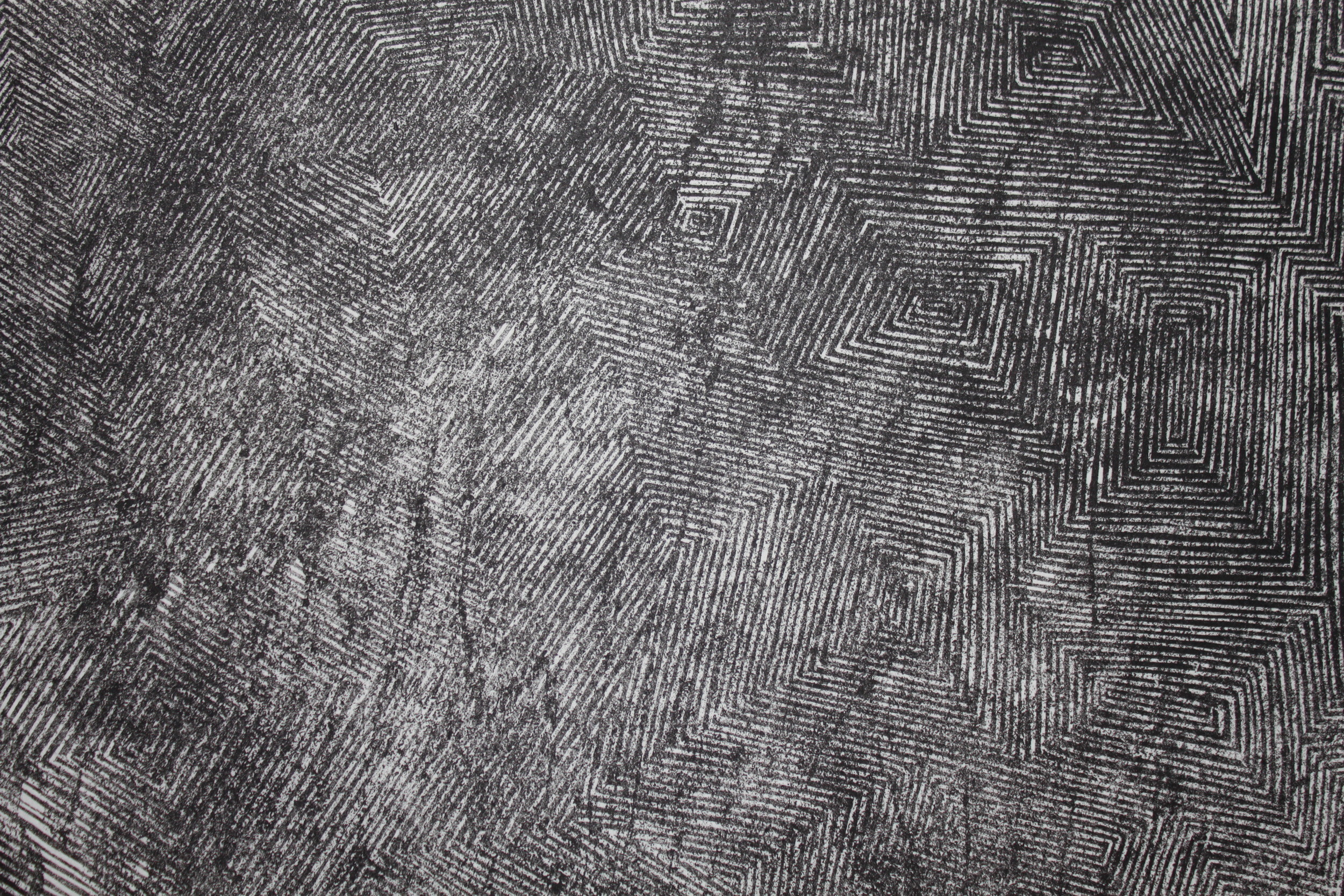 Locust 1 (detail). 2013. woodcut and concrete block relief on Japanese paper.39 in x 26 in