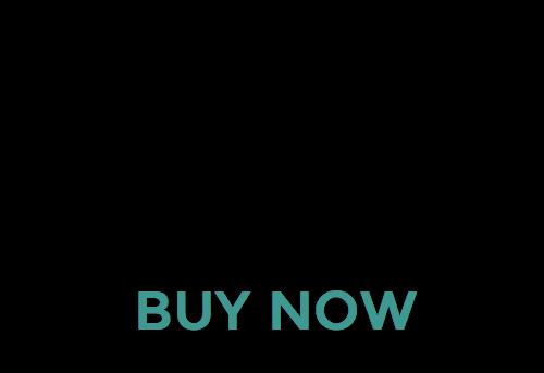 full service buy now v2b 500 pix.png