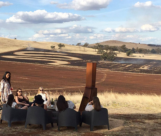 A geoglyph in the shape of a huge serpent was ploughedinto the cellar door paddock as part of this year'sSheppARTonfestival.