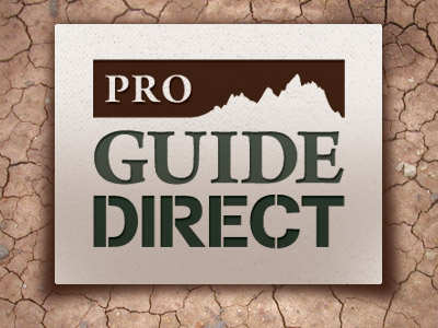 Pro Guide Direct Logo