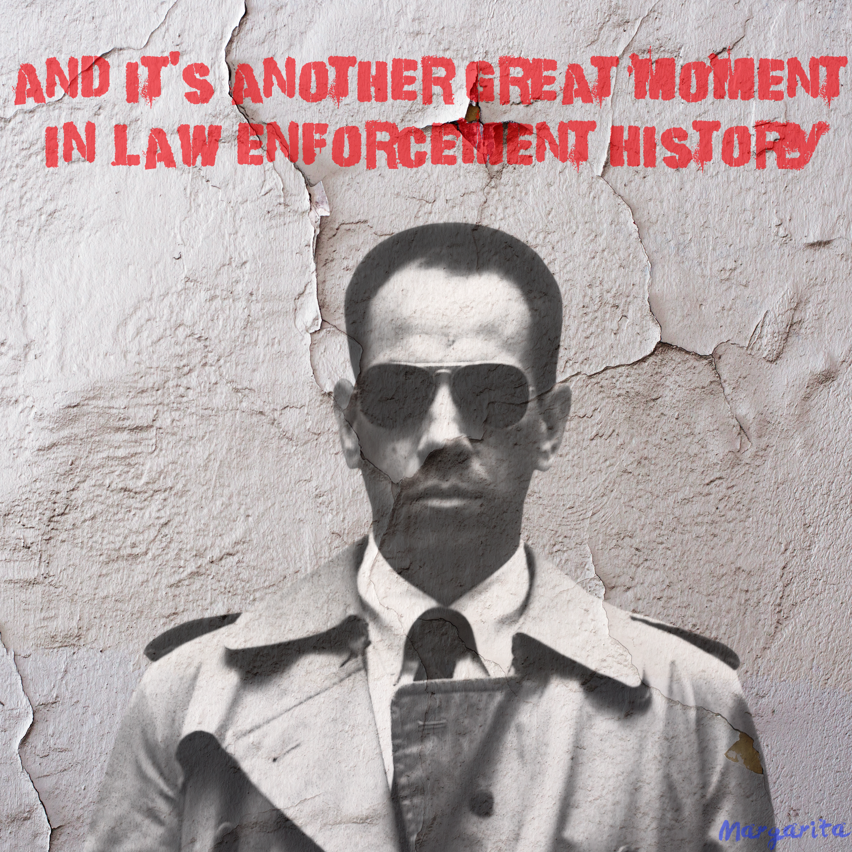 Law enforcement history.png