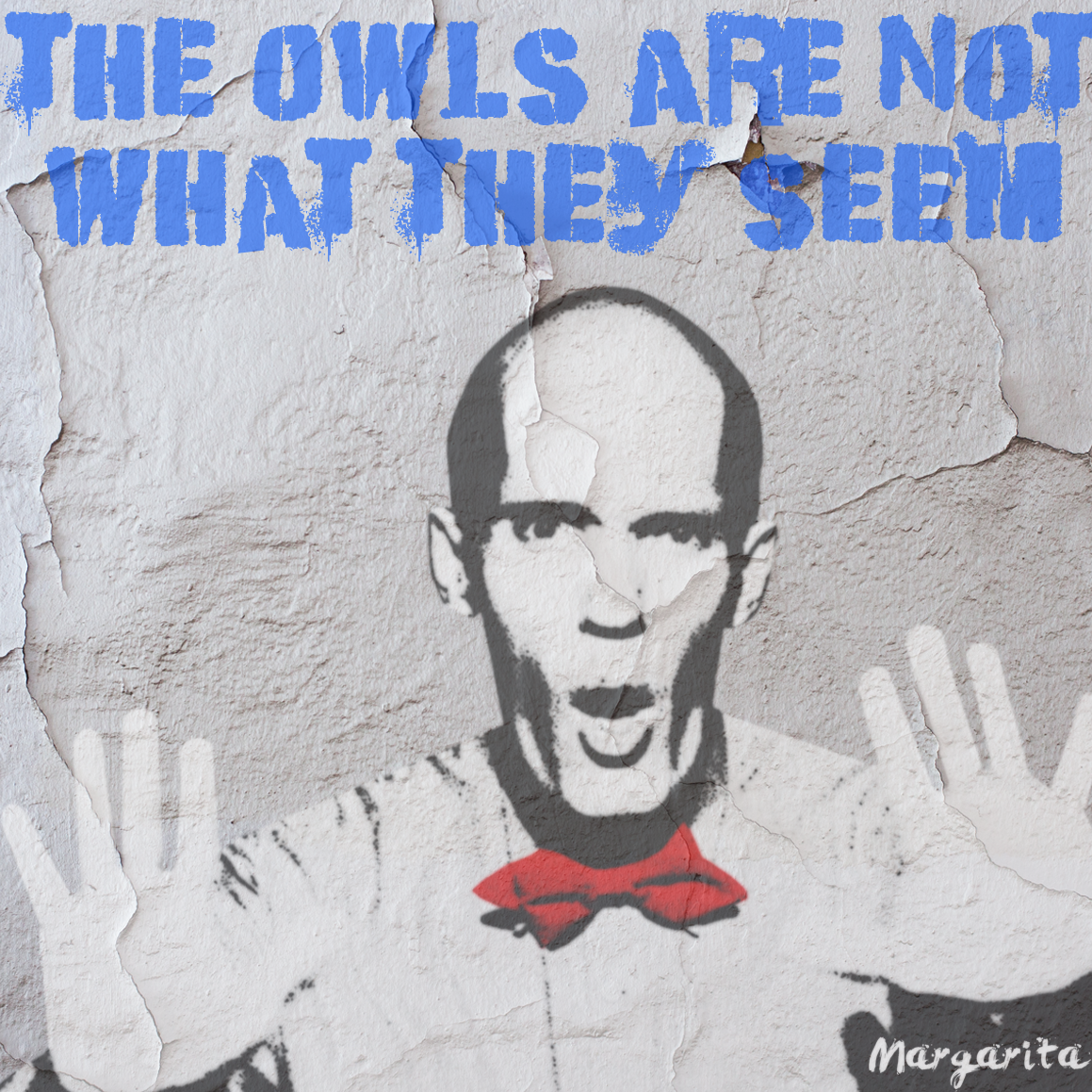 owls are not what they seem.png