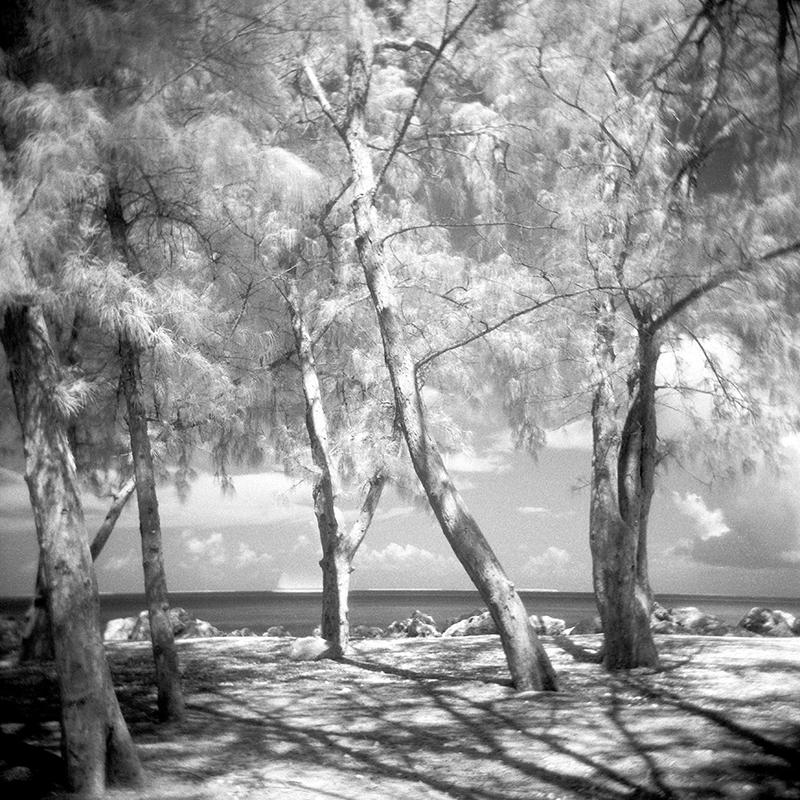 emma j starr photography analogue key west- 'sail with me' .jpg