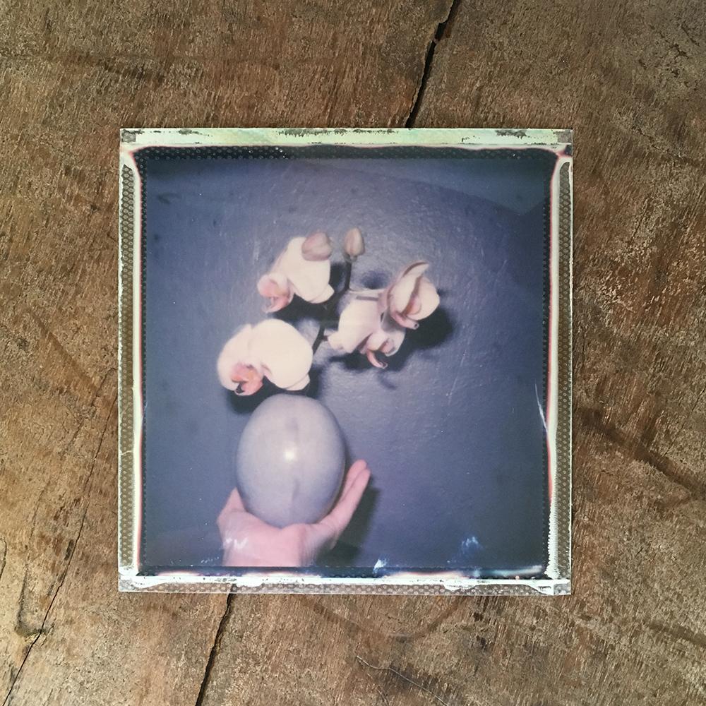 emma j starr analogue photography key west polaroid .jpg