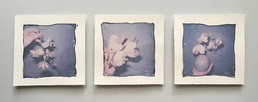 emma starr photography polaroid emulsion triptych Anne McKee art auction.jpg