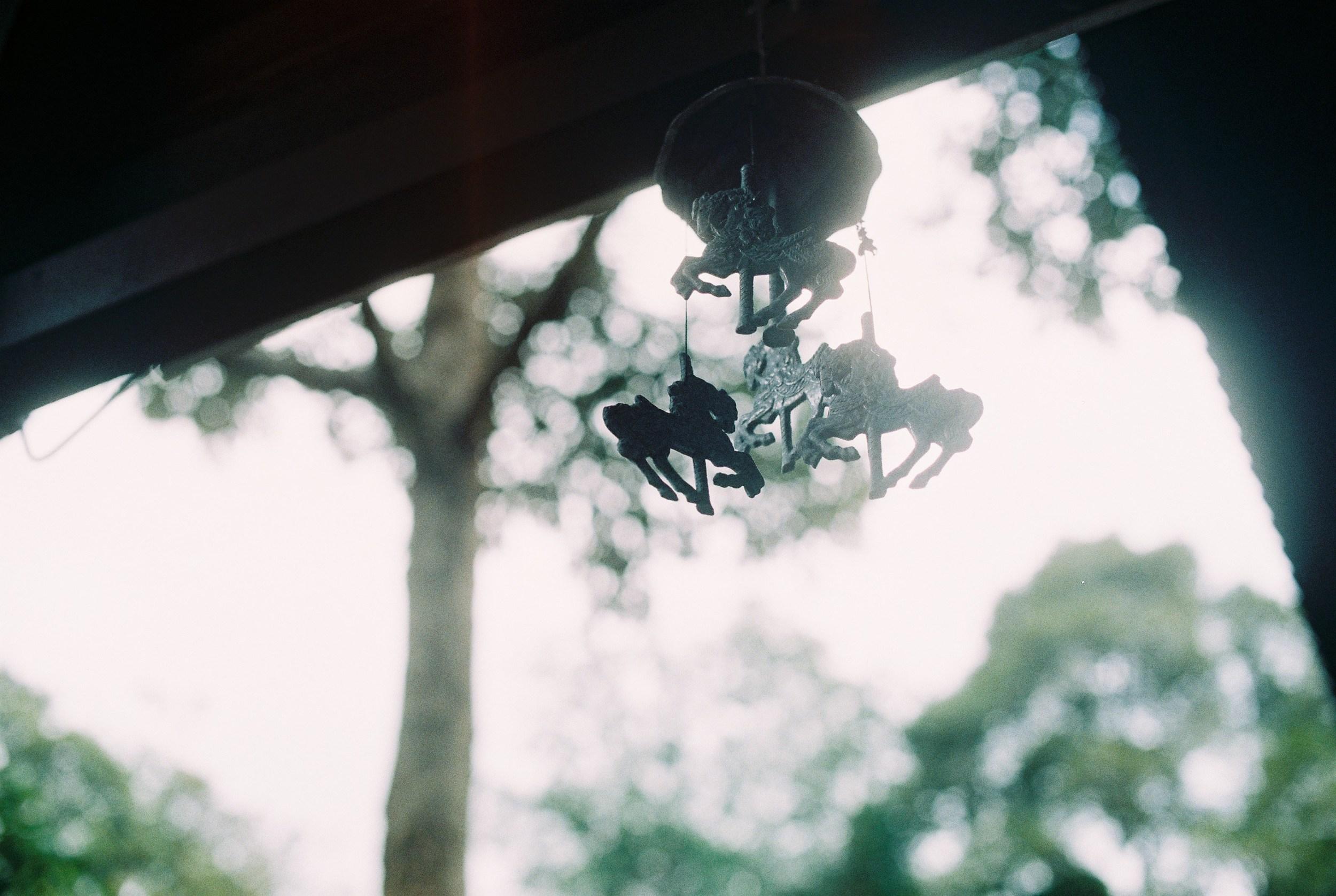 penang-film-photography-06.jpg