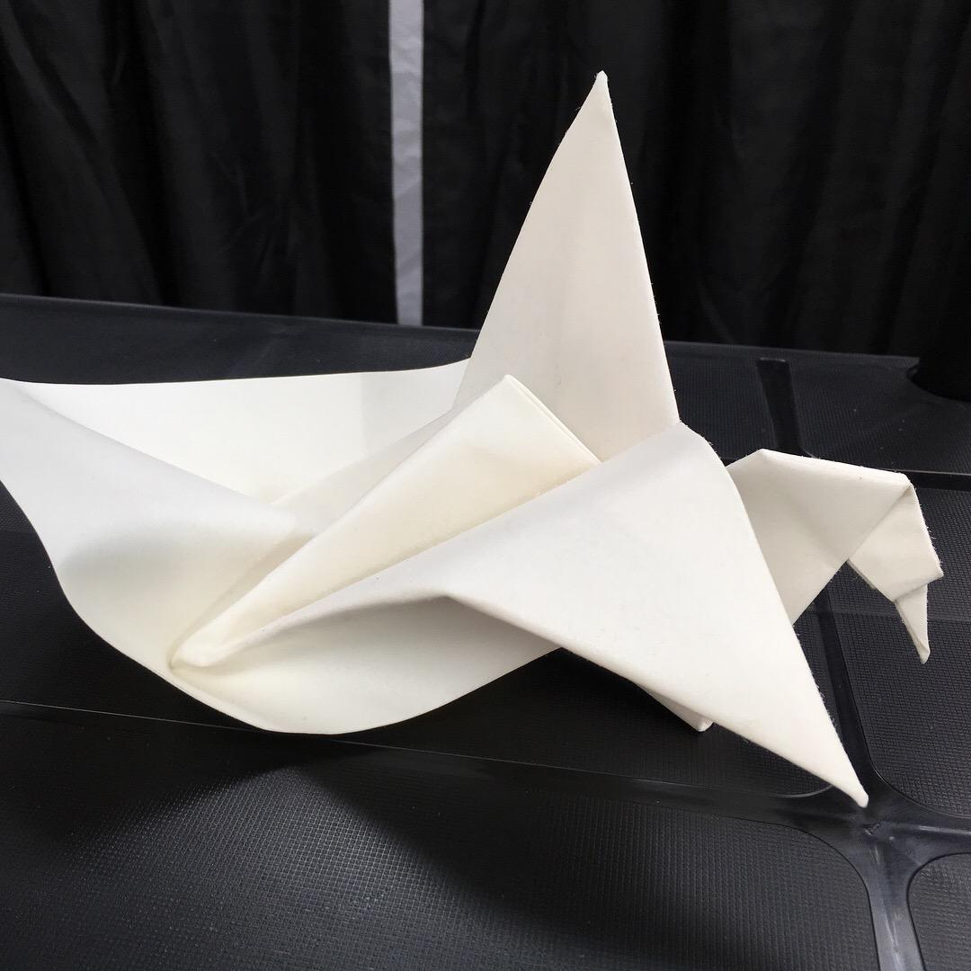 Unfolding Crane