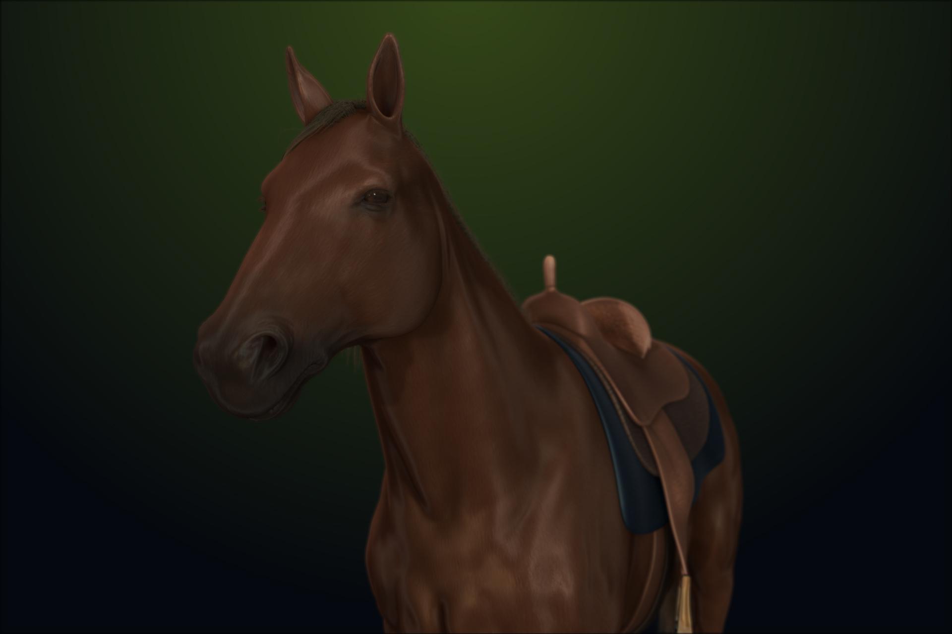toby - American Quarter Horse