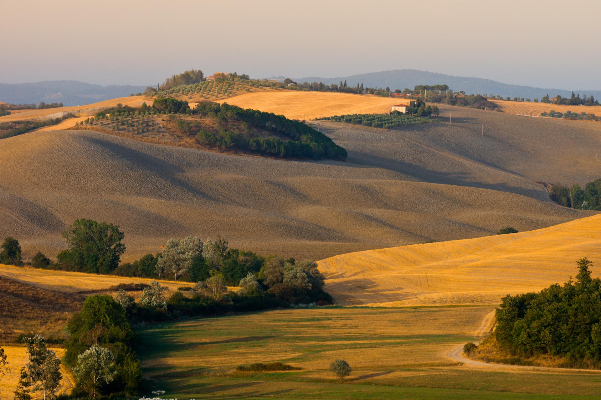 landscape fields.jpg