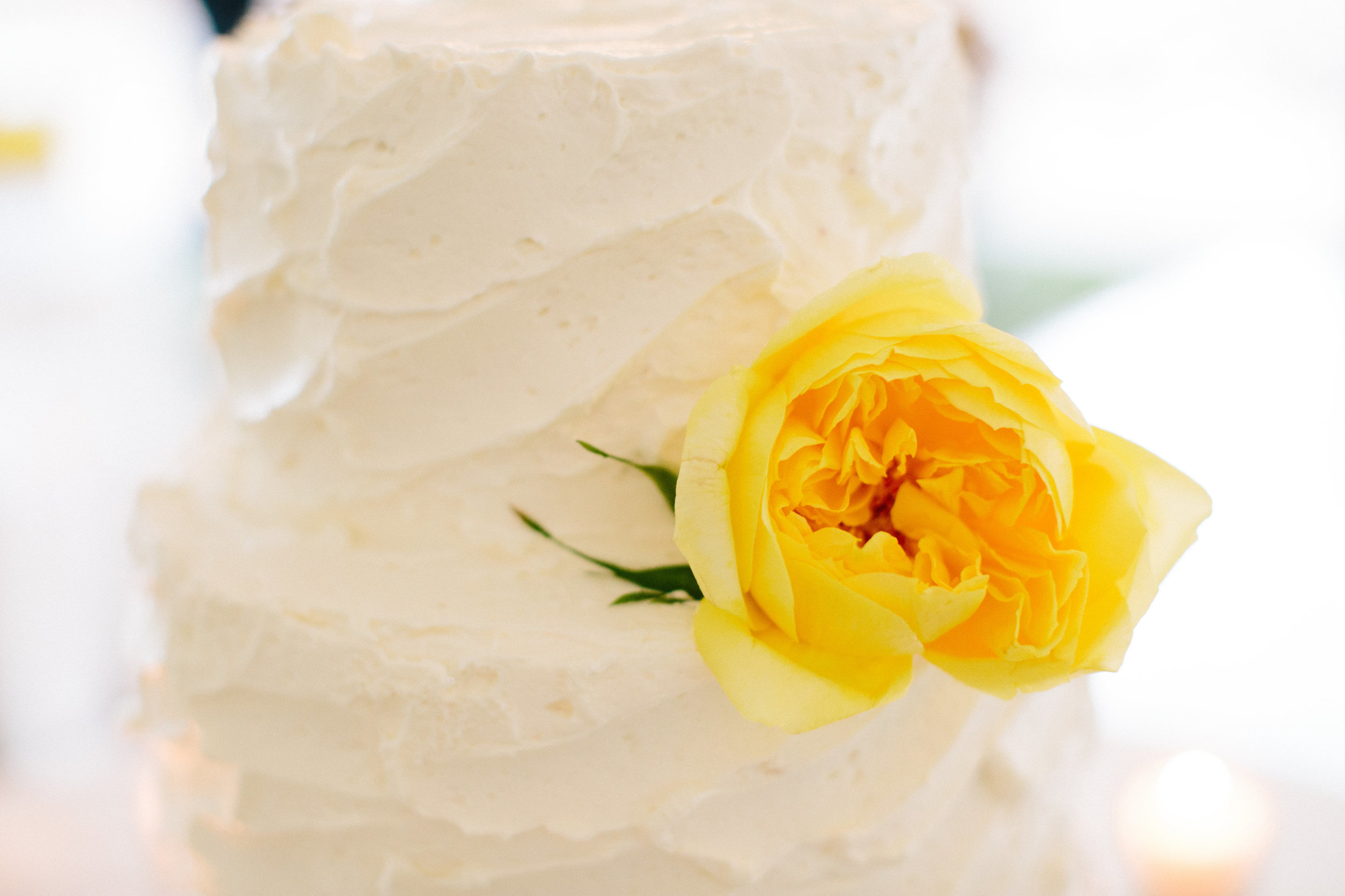 A single yellow garden rose on the cake