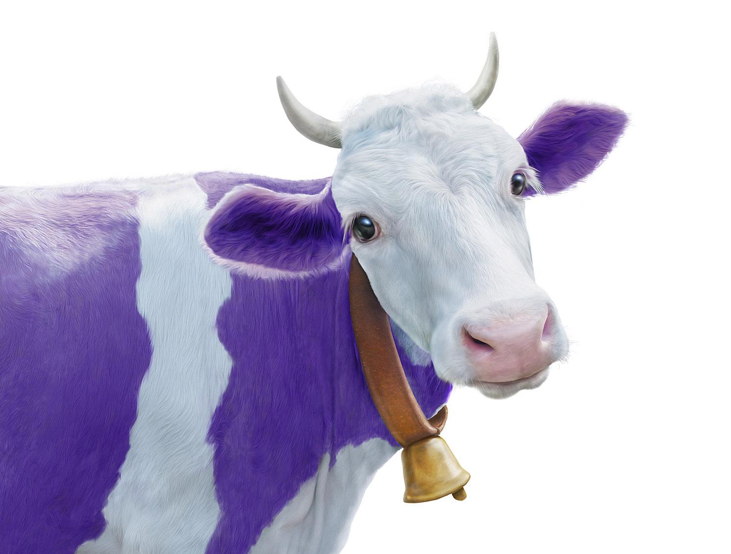 MILKA LILAC COW