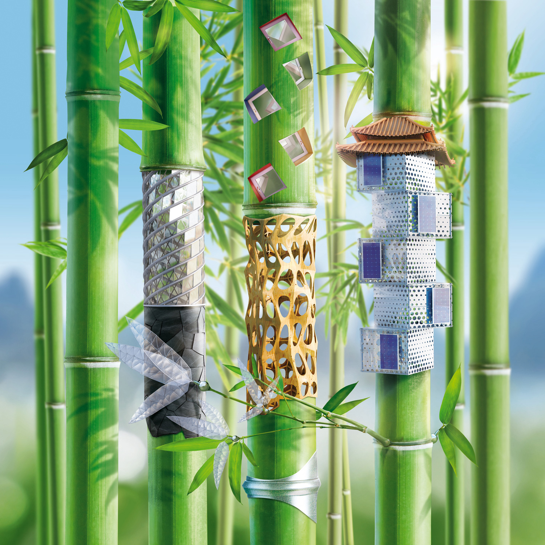 BAU_Bambus_China_1500px.jpg