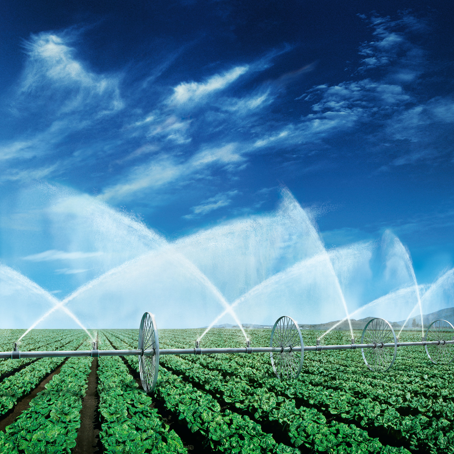 GROHE : IRRIGATION