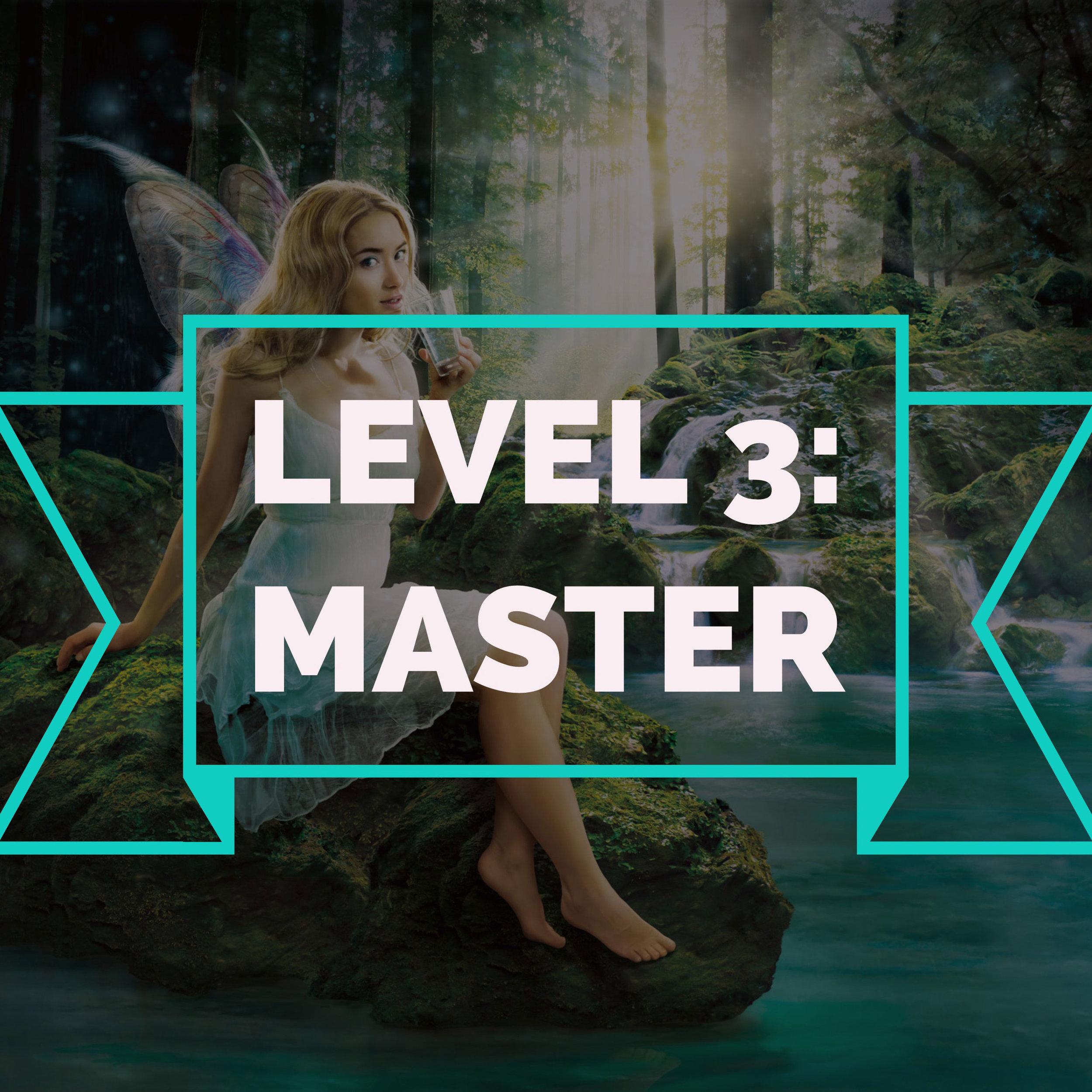 LEVEL3_Master_Preis.jpg