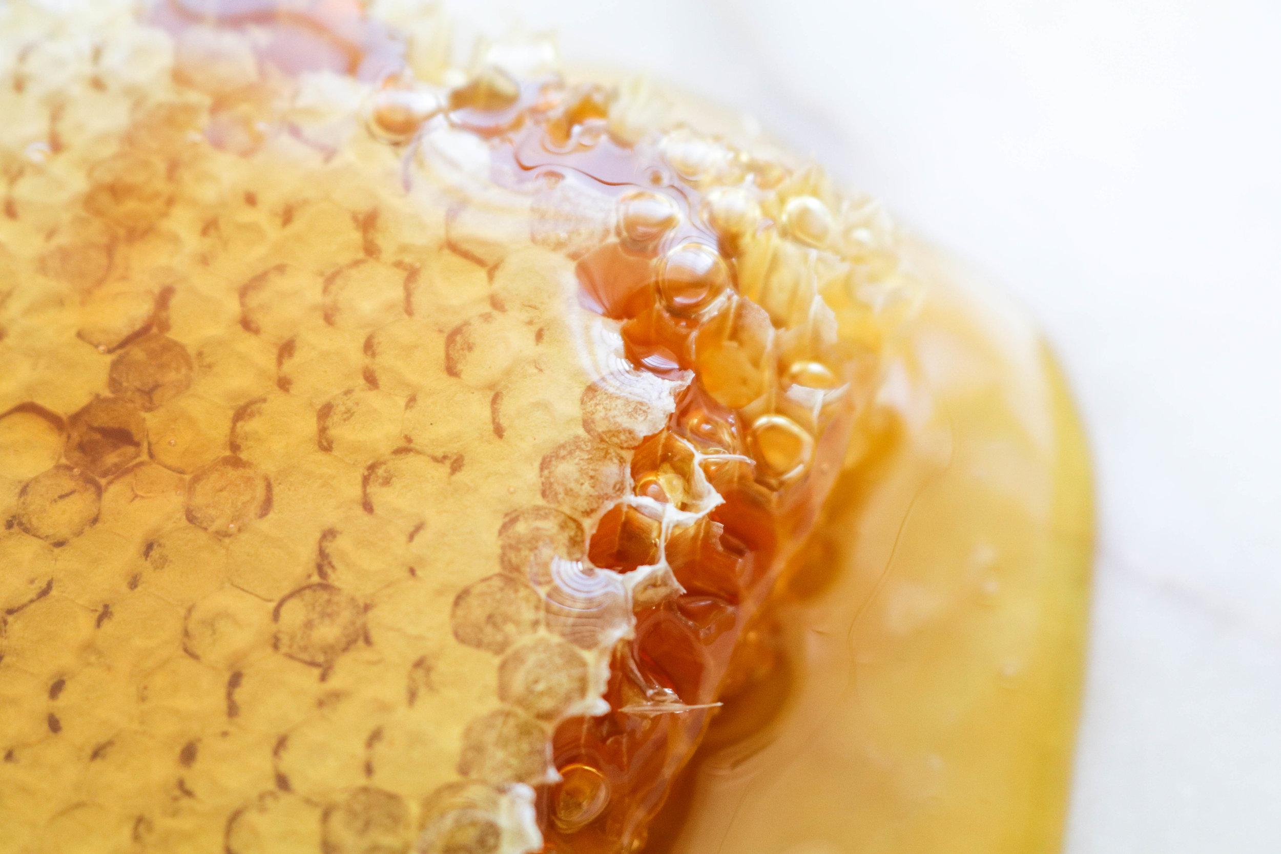 HoneyGrail (23 of 14).jpg