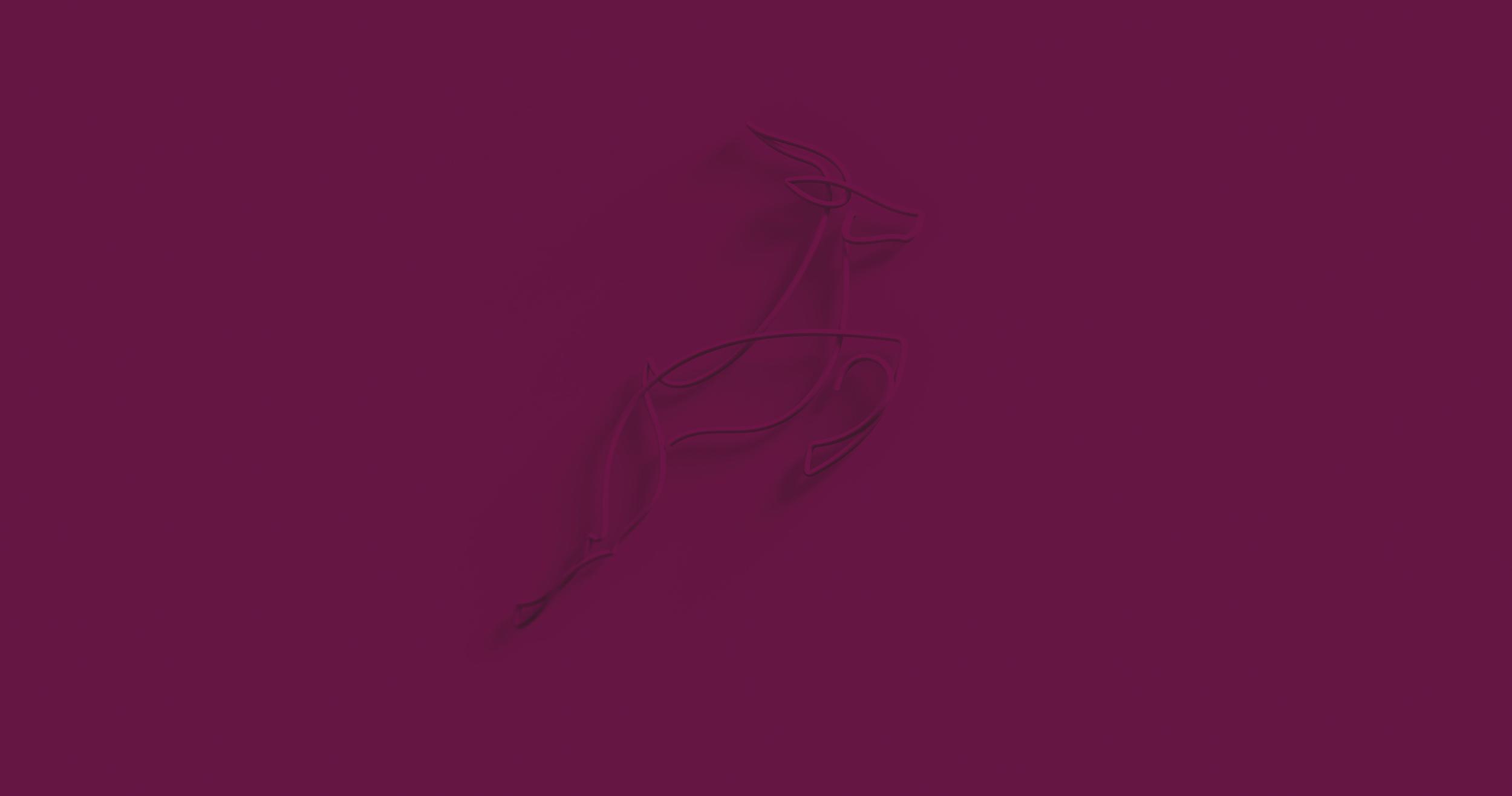 Folio-Gazelle-Mul.jpg