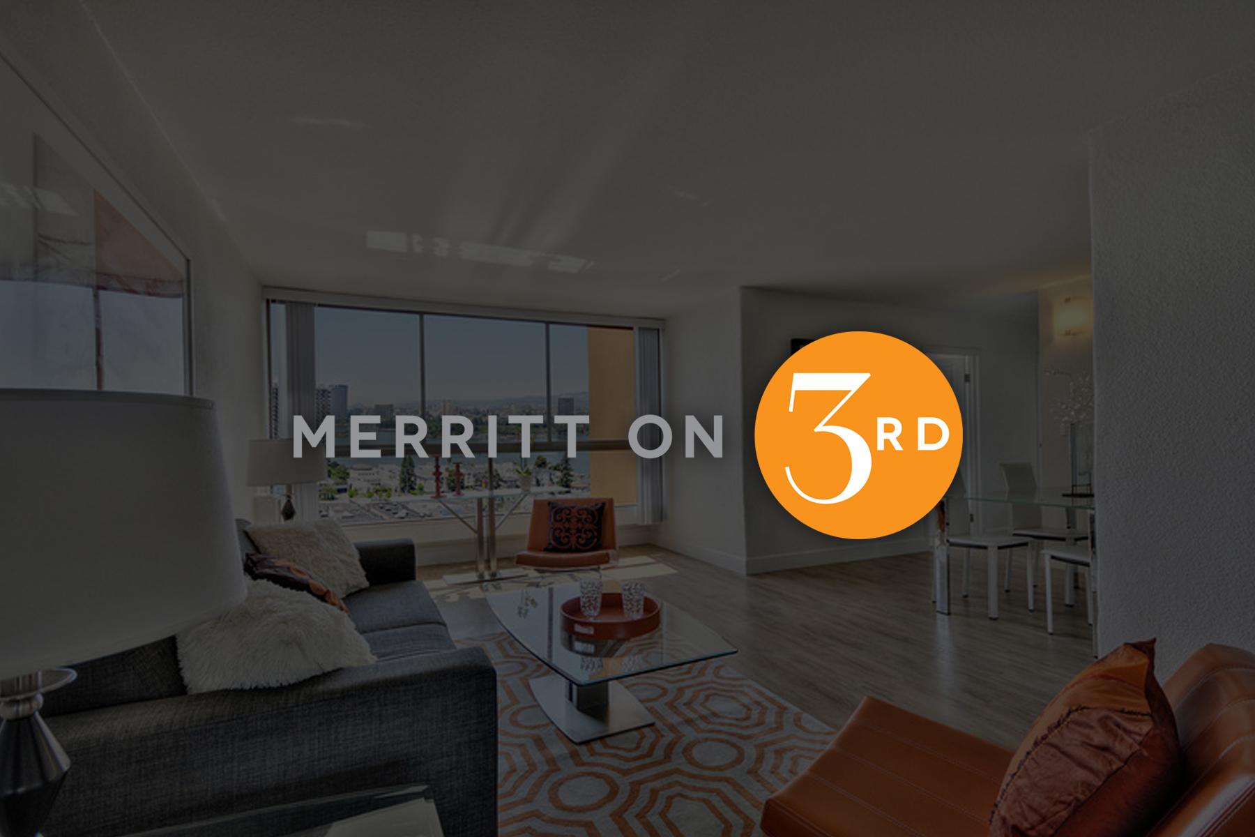 Merrit-Logo_web1.jpg