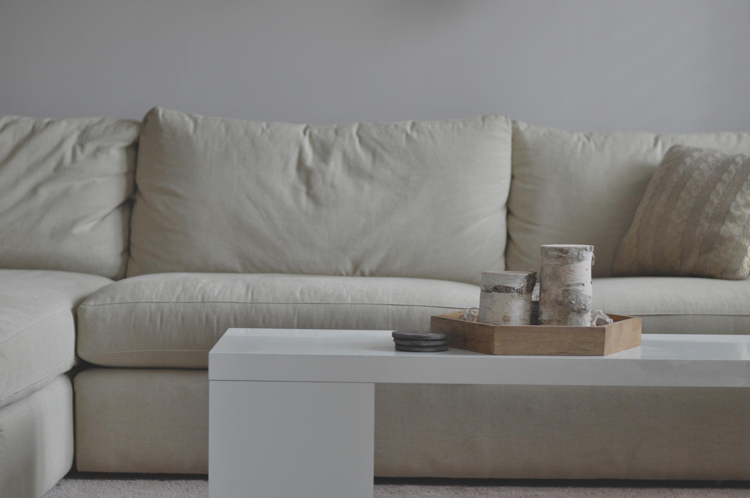 Basement Couch.JPG