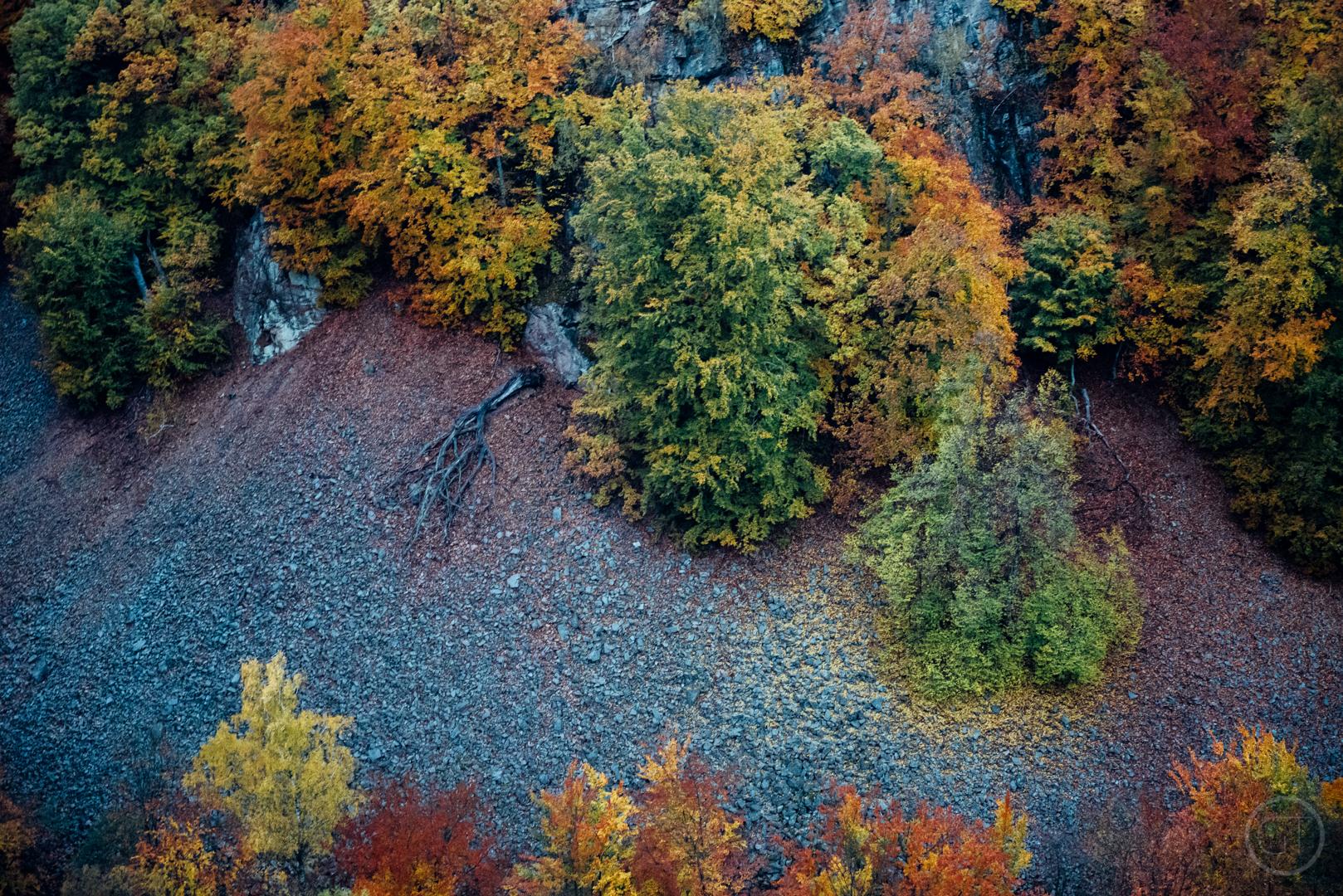 GUSTAV-THUESEN-adventure-denmark-photographer-nature-landscape-KØBENHAVN-FOTOGRAF-lifestyle-6.jpg