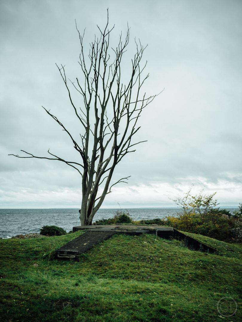 GUSTAV-THUESEN-adventure-denmark-photographer-nature-landscape-KØBENHAVN-FOTOGRAF-lifestyle-11.jpg