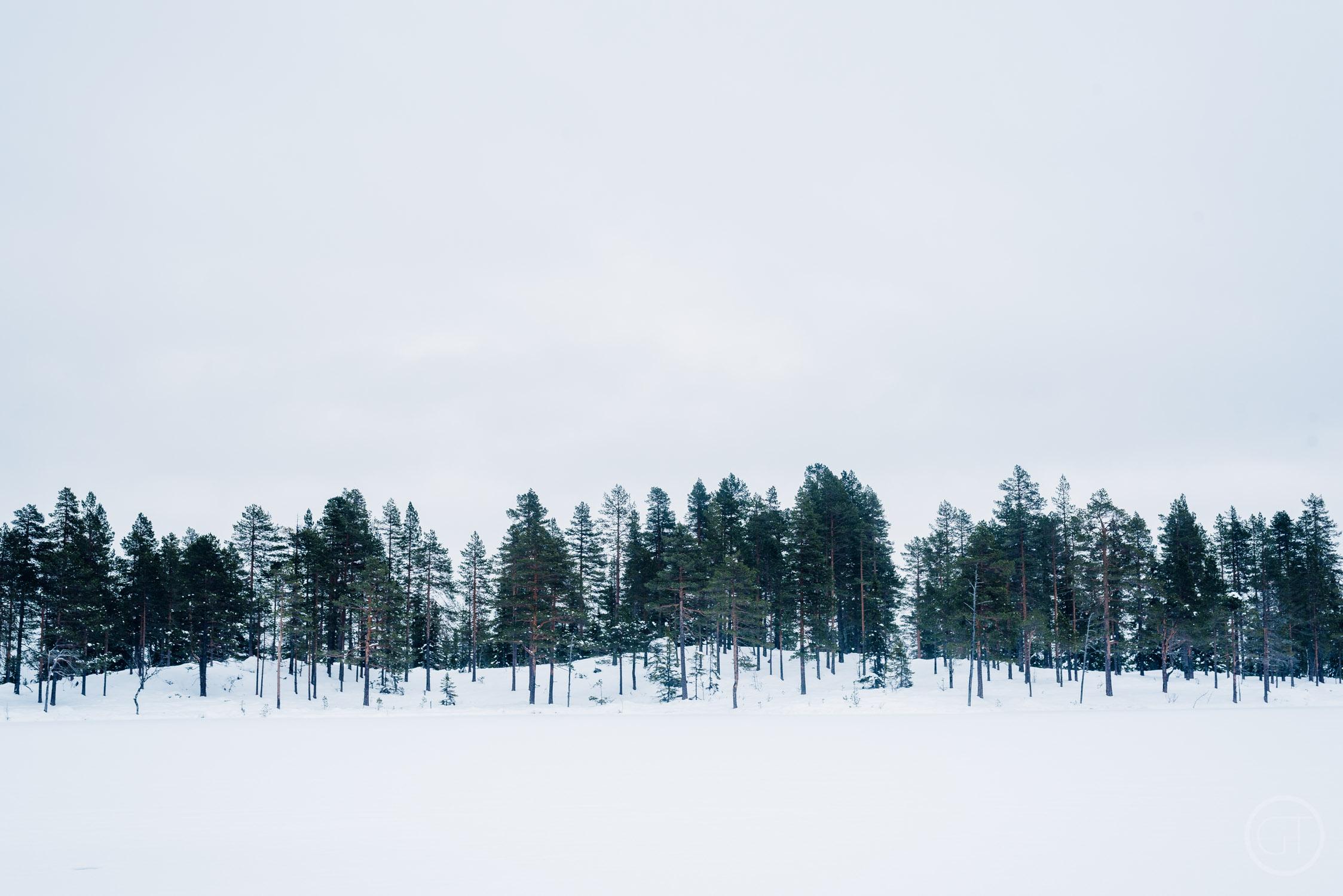 GUSTAV_THUESEN_HUNTING_NORWAY_OUTDOOR_LIFESTYLE_PHOTOGRAPHER_PROFESSIONAL-28.jpg