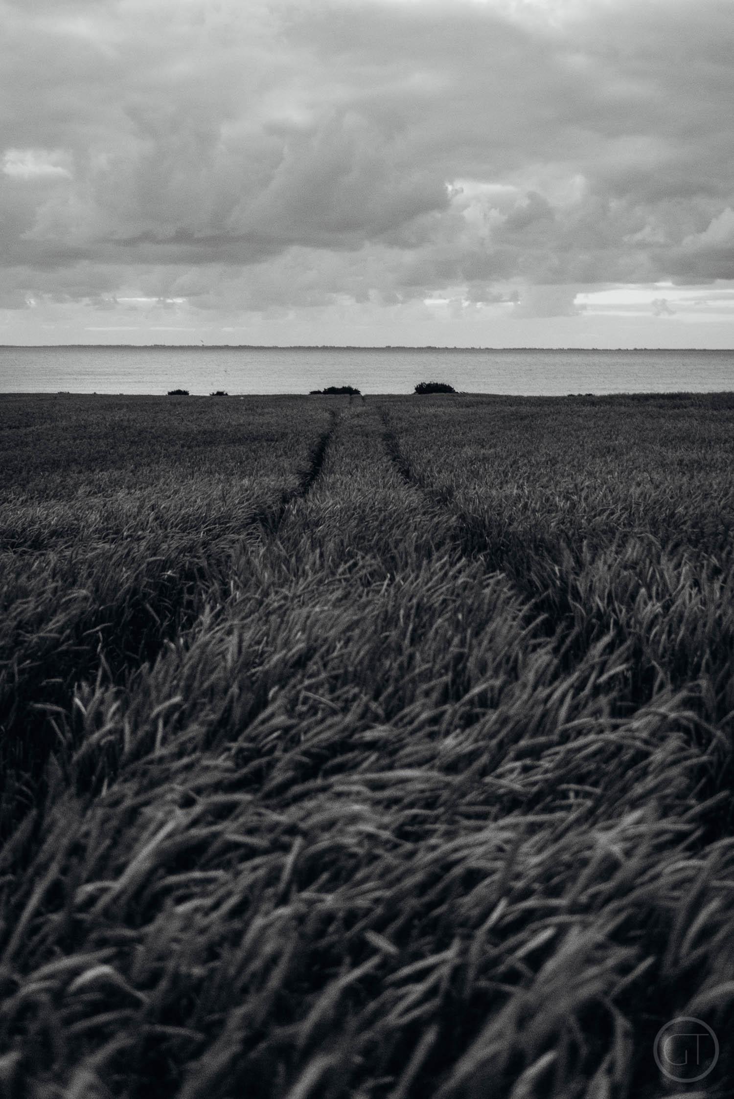 GUSTAV-THUESEN-DENMARK-COAST-PHOTOGRAPHER-VIDEO-NATURE-ADVENTURE-OUTDOOR-LIFESTYLE-2.jpg