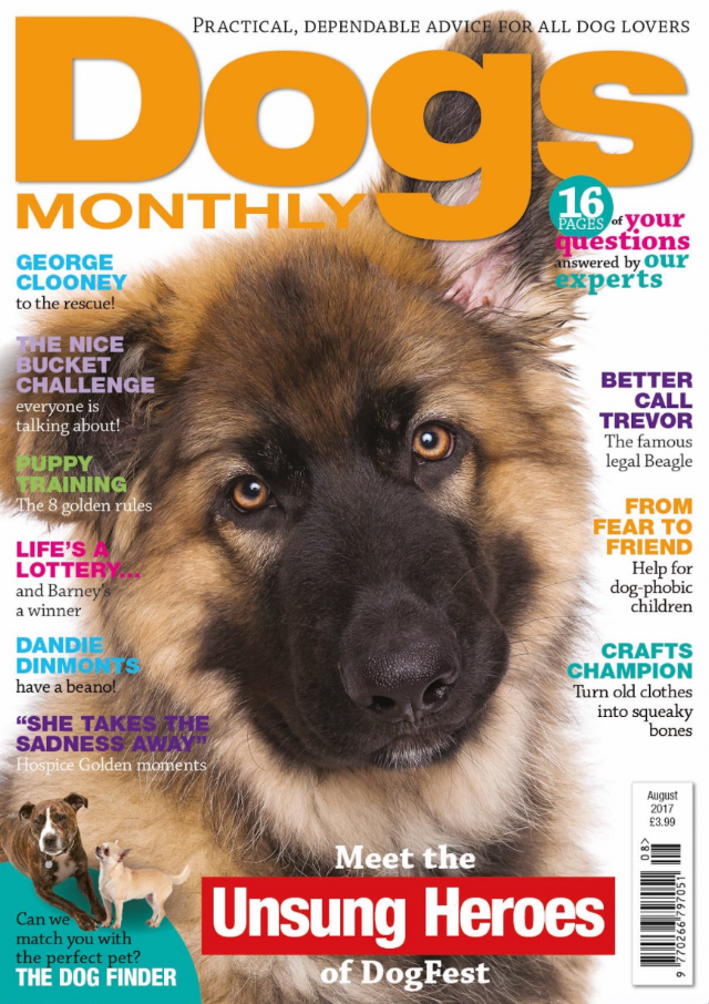 Fletch DM Dogs Monthly Cover.png