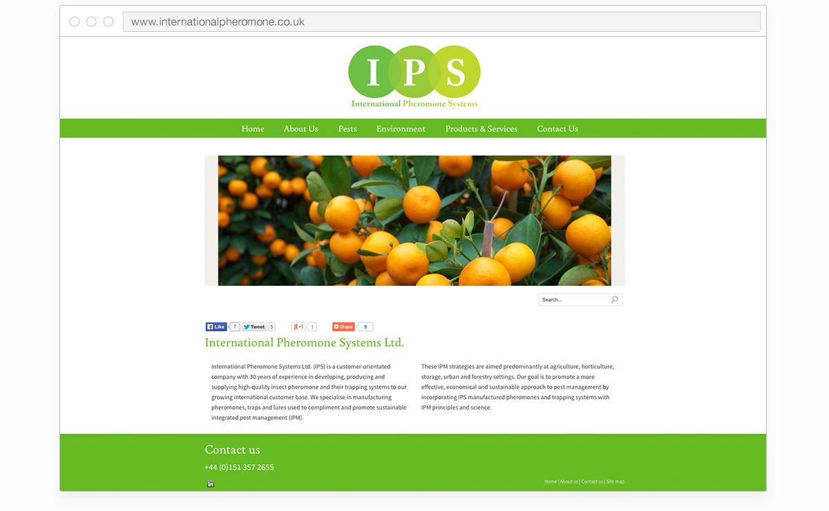 short_0027_ips-home-mockup.jpg