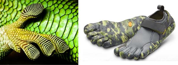 bio-shoes.jpg