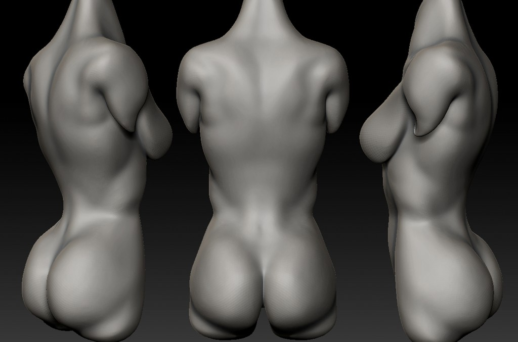 Female-Back-Study-1024x677.jpg