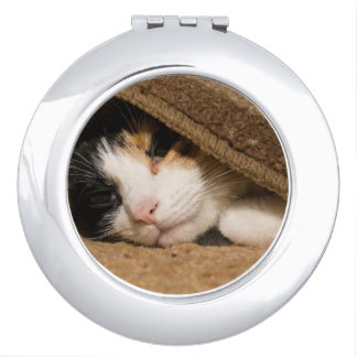 calico_under_the_rug_travel_mirrors-r7f2a8c1bd00844ab87b6c246c1d9c697_z2h2u_324.jpg
