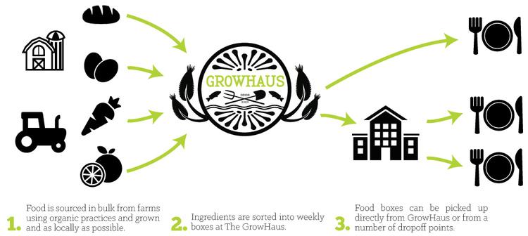 Food box graphics.jpeg