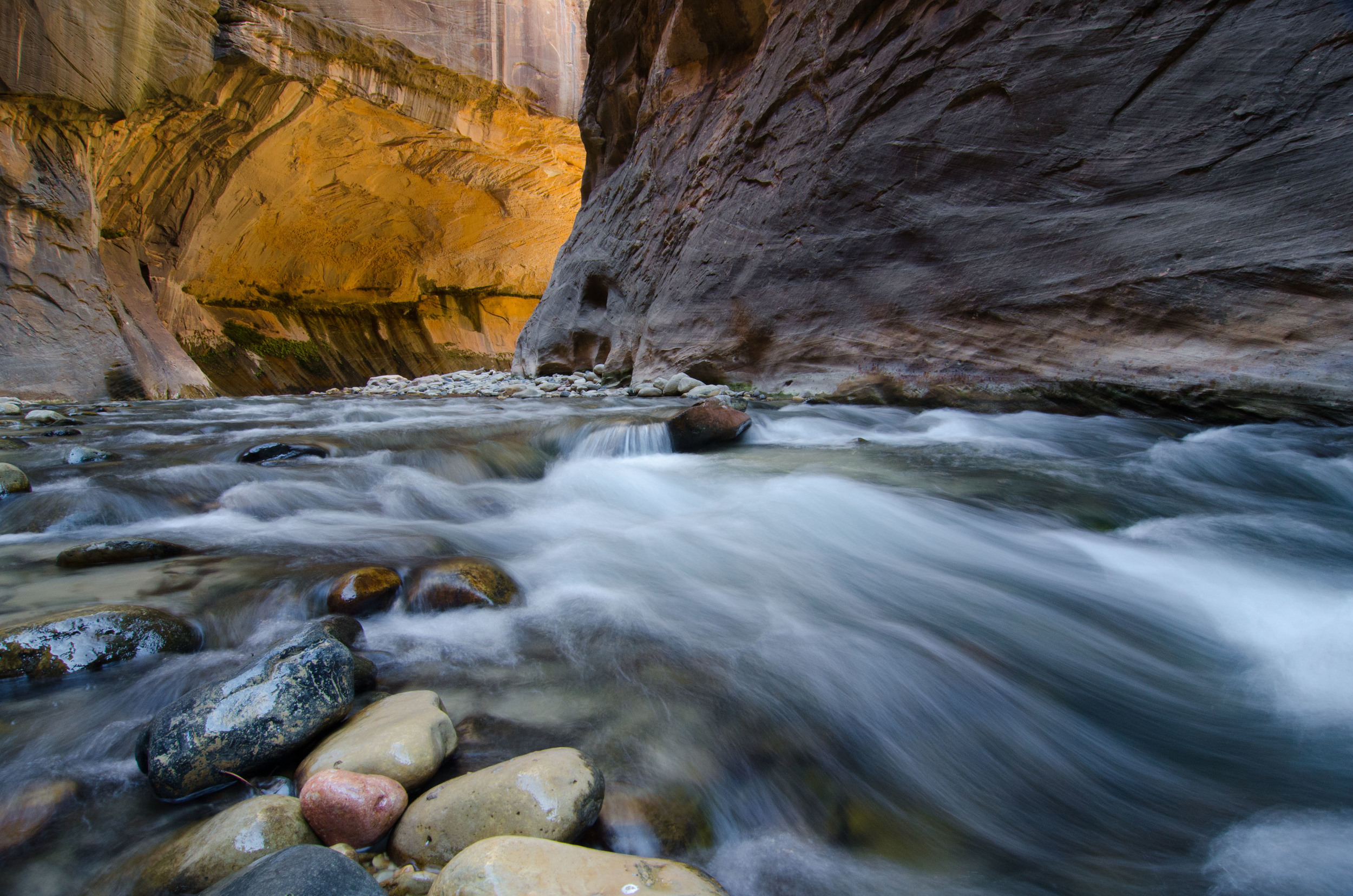 Zion Narrows with Reflected Light and Water