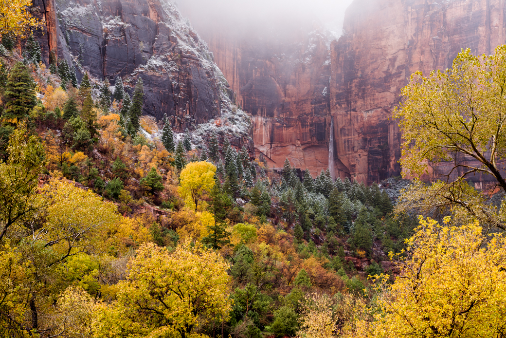 Waterfall in Zion National Park with Fall Foliage