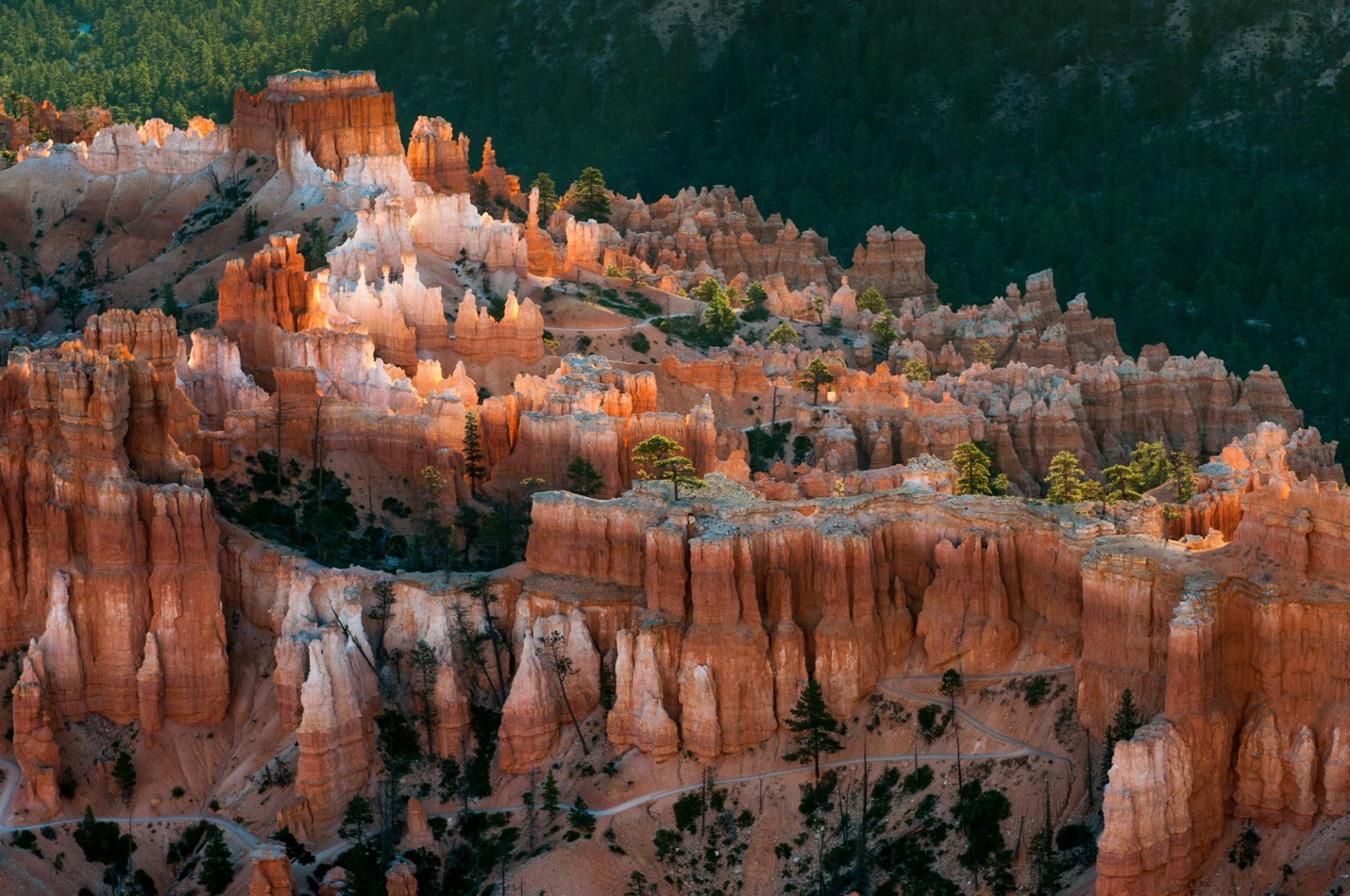 Bryce National Park with Reflected Light at Sunrise