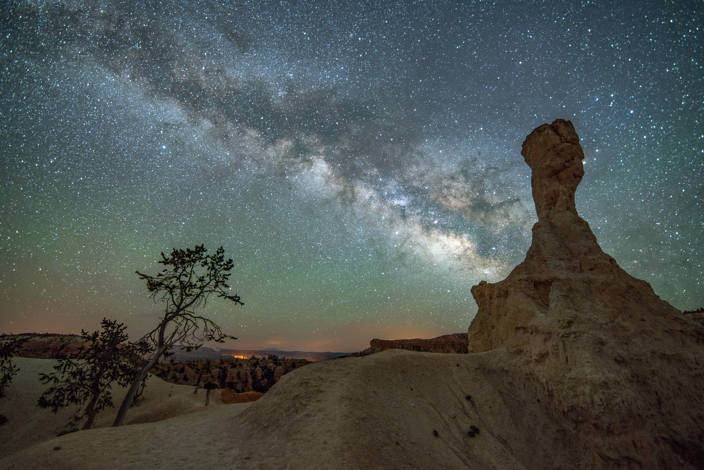 Hoodoo in Bryce Canyon with Milky Way and Tree