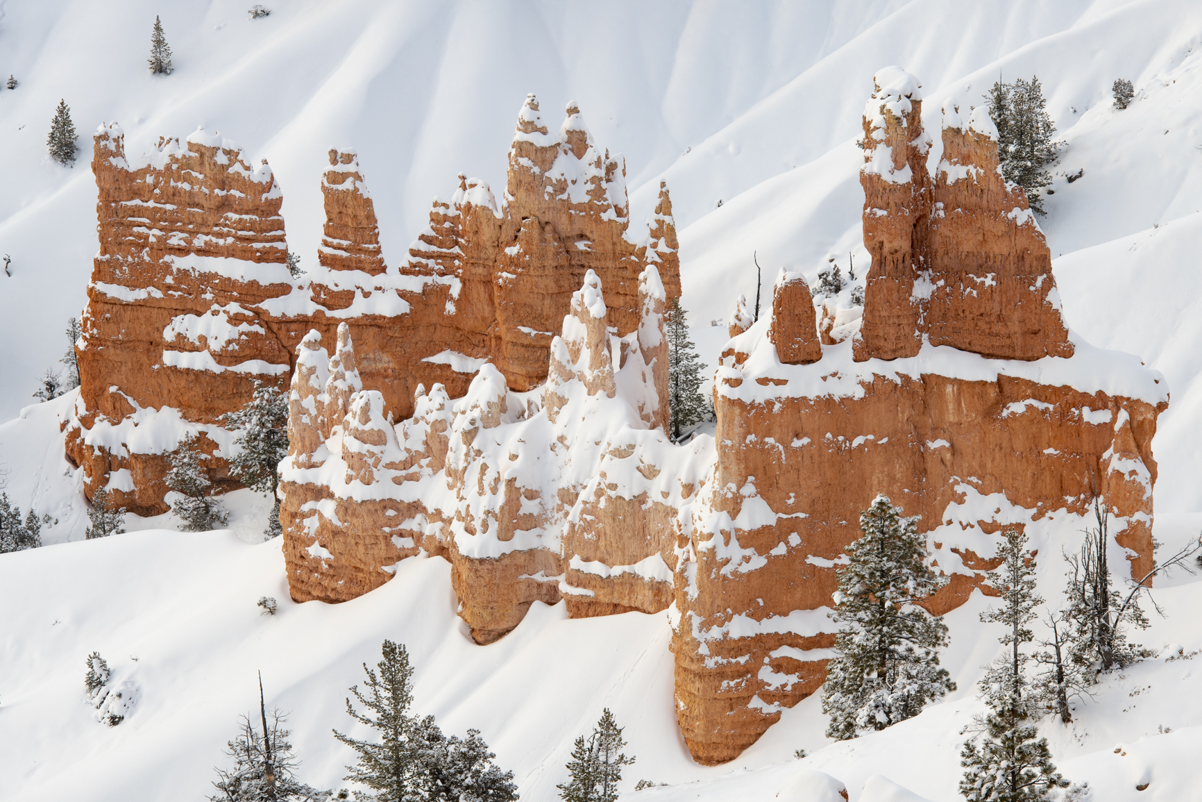 Bryce National Park Hoodoos during Winter with Snow
