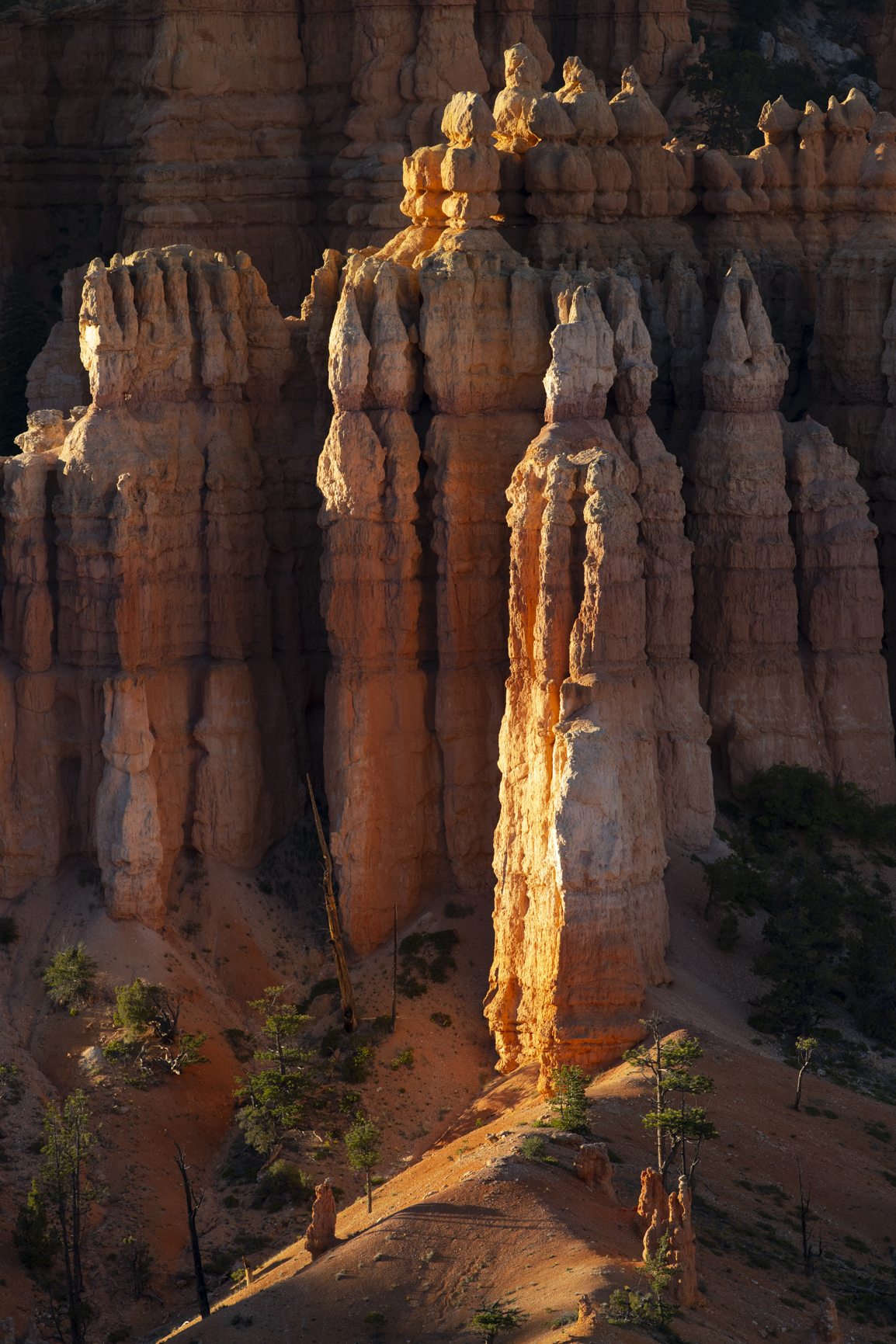 Bryce Canyon National Park with Glowing Hoodoos and Light