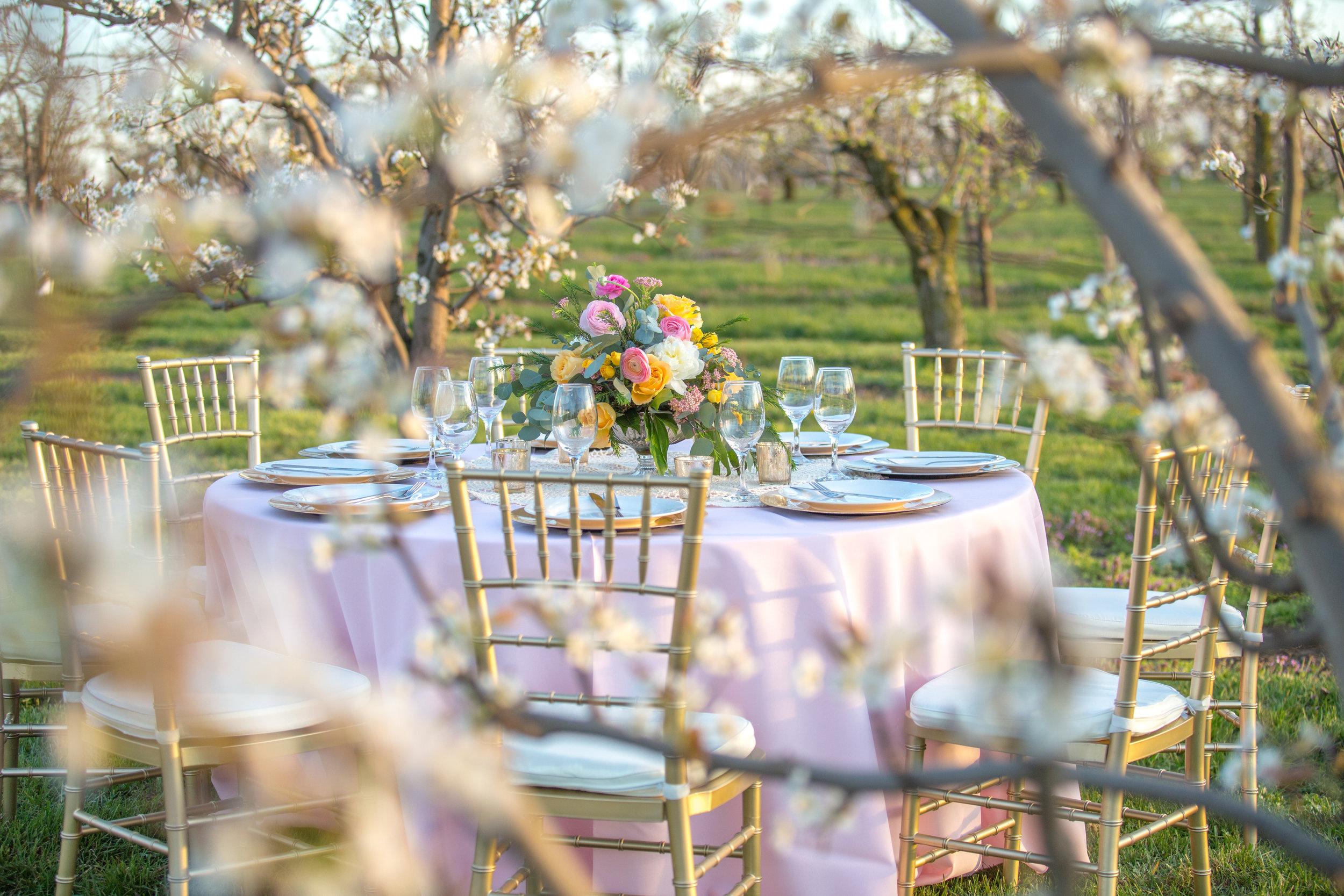Styled Shoot at Evan's Orchard 40.jpg