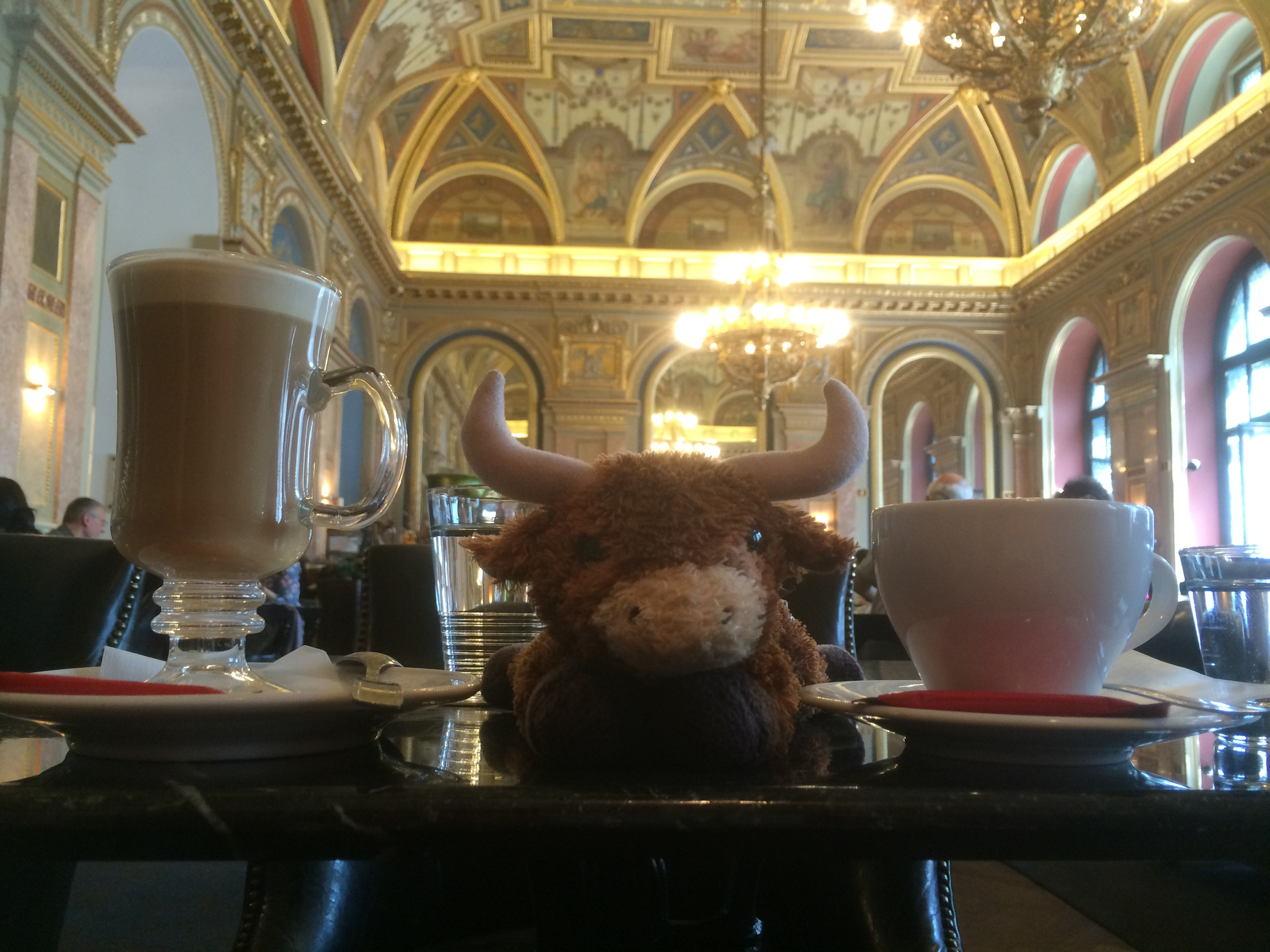 Mr. Pickles enjoying a delicious coffee in Budapest