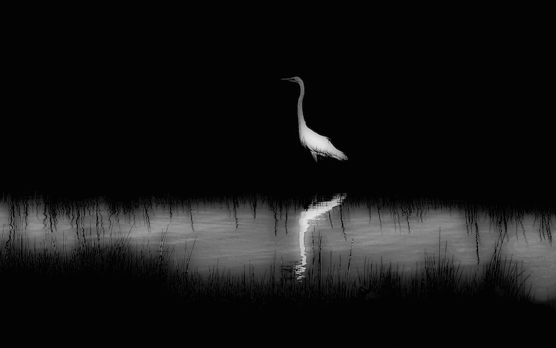 Lake Tashmoo, Solitude #3