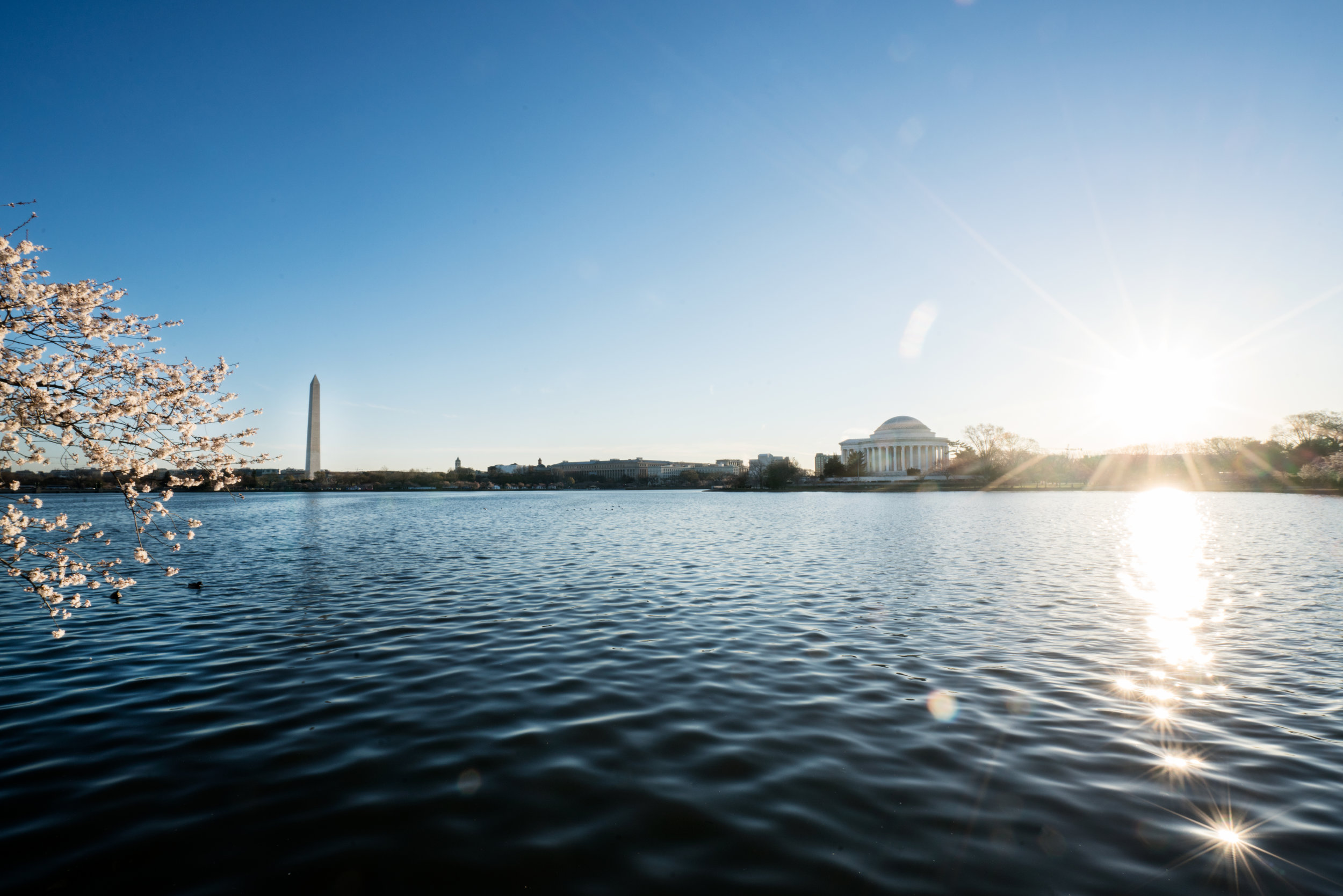 A great sun flare shot of the Washington Monument and the Jefferson Memorial with a little cherry blossom kicker over the Tidal Basin. #Sony A7RM2 , F/22, 1/40th, ISO 200