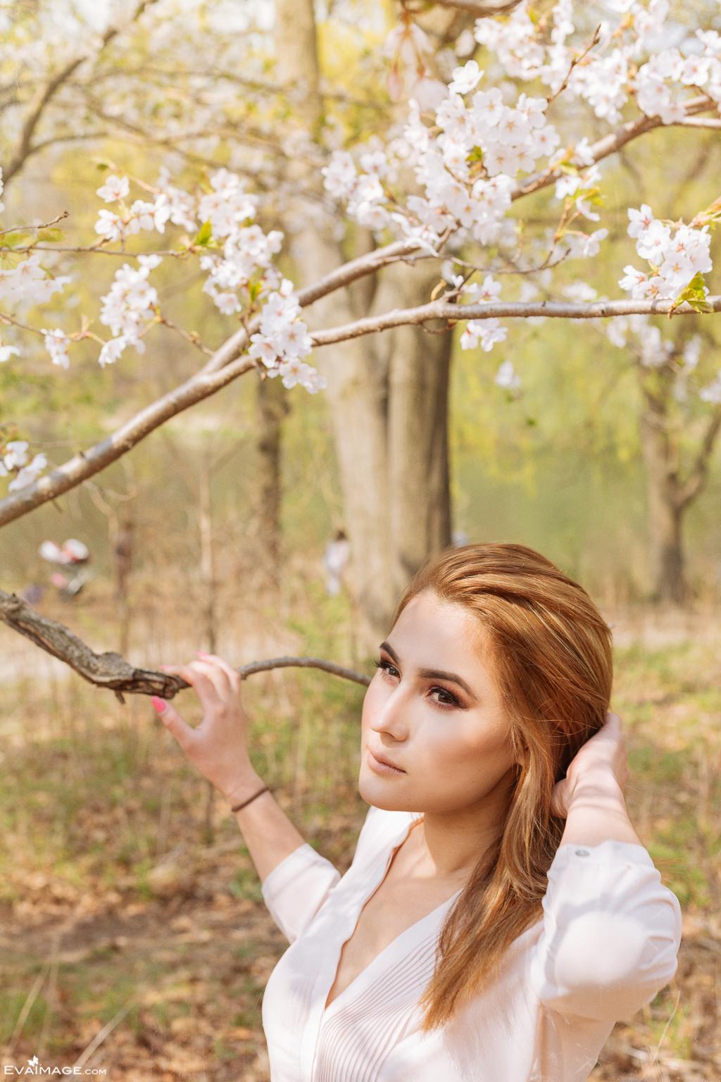 Cherry Blossom High Park Portrait