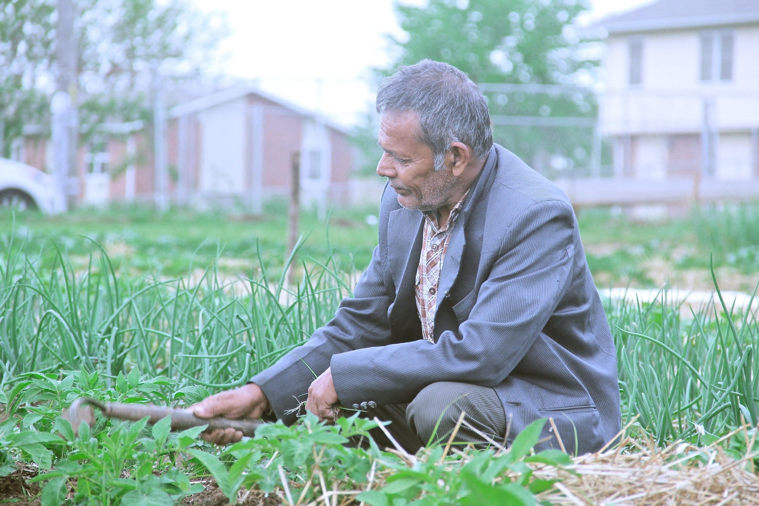 Khadka Regmi from Bhutan, a member and farmer with New Roots for Refugees