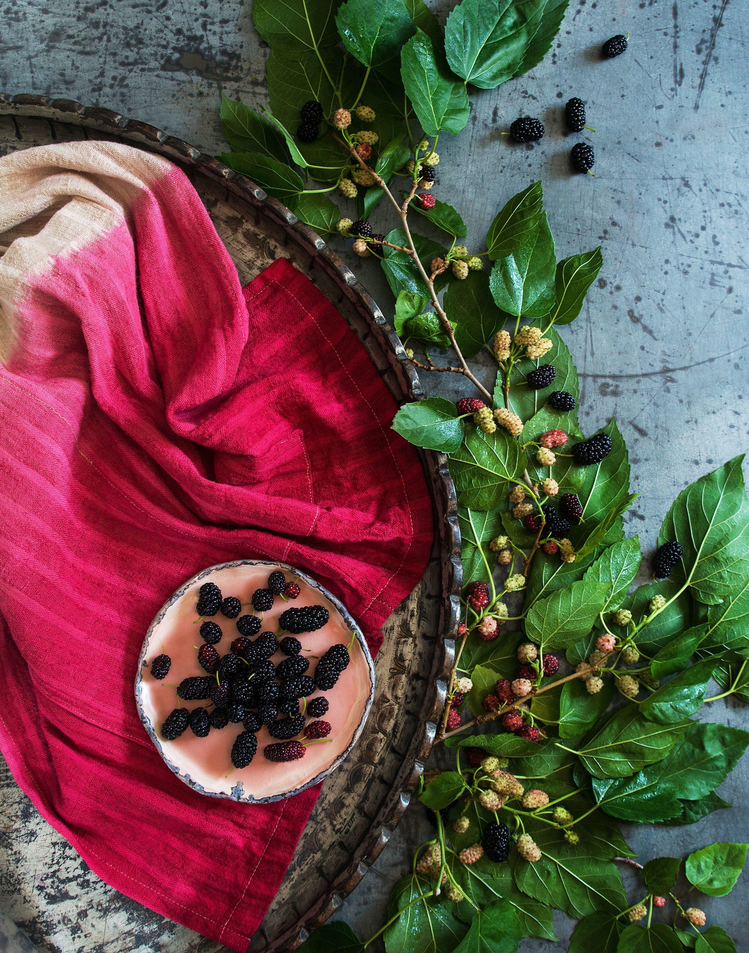 Mulberry004 (1).jpg