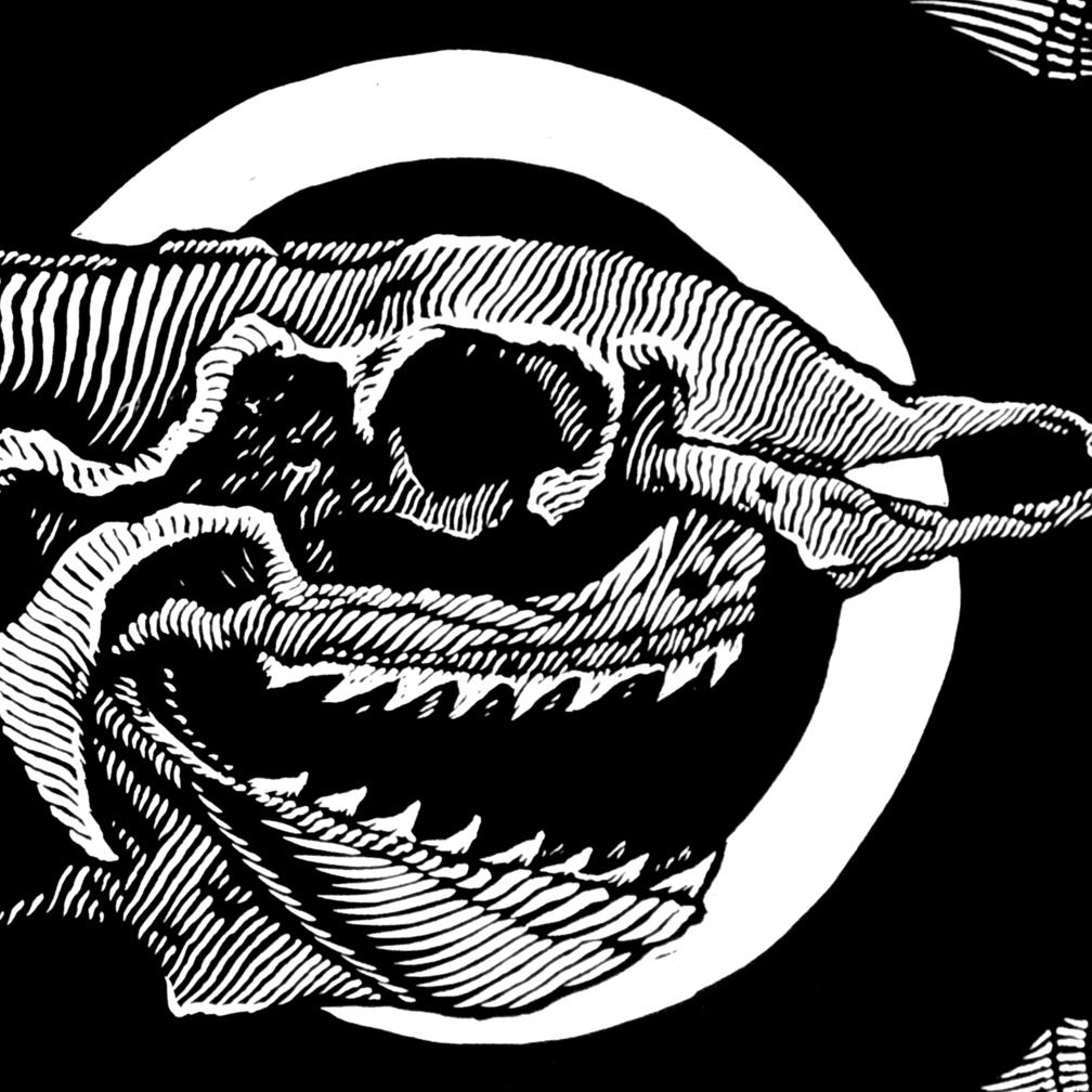 Extincion Vll