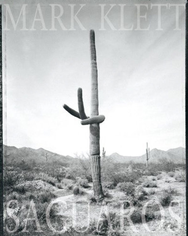 Saguaros, Radius Books 2007